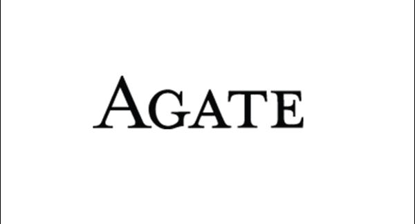 Picture for manufacturer Agate Publishing / Denene Millner Books